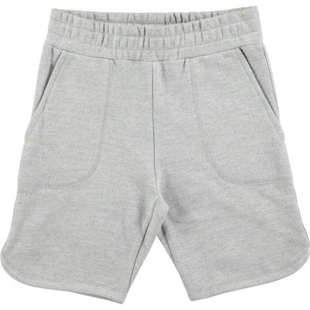 MOLO - Shorts i grå sweat. Alberto