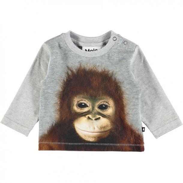 MOLO - Babybluse med orangutan. Enovan..