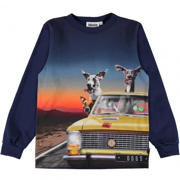 MOLO - Langærmet t-shirt med dyr i bil. Rez NY